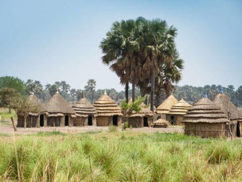 Village de la tribu Surma dans la vallée de l'Omo, Éthiopie